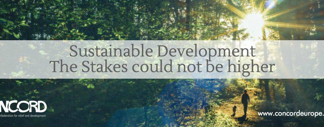 """CONCORD Report """"Sustainable Development – Stakes could not be higher"""" 2016"""