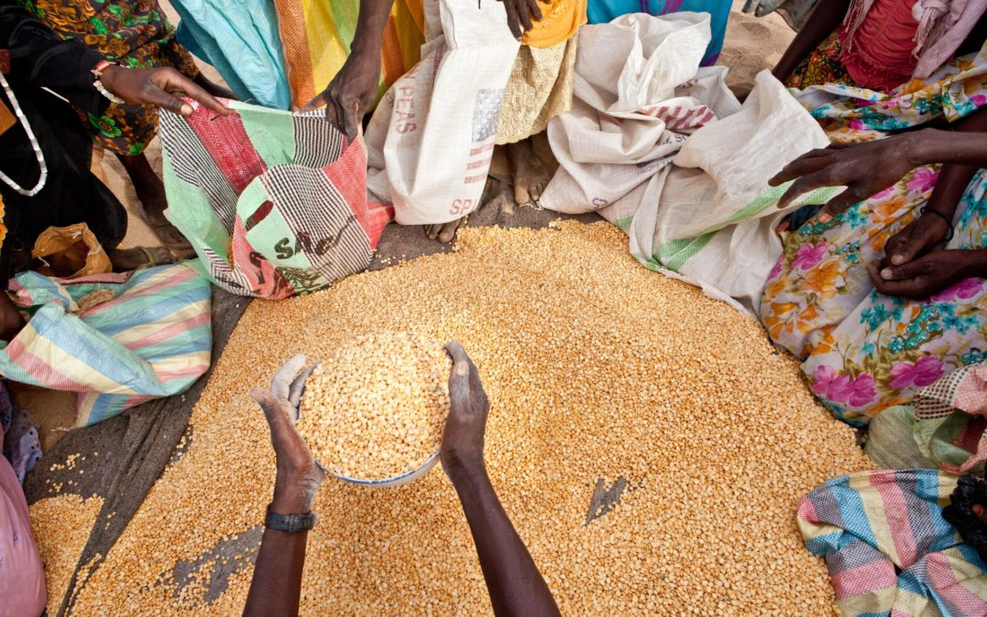 Monitoring a moving target: Assessment of the implementation plan of the EU Food Security Policy Framework