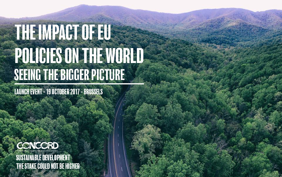 The Impact of EU Policies in the World. Seeing the bigger picture.